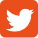 twitter_bug